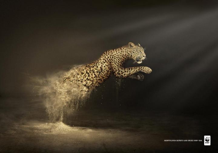 10. Desertification Destroys WWF1