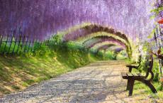 29. Wisteria Flower Tunnel, Kawachi Fuji Garden, Kitakyushu, Japan